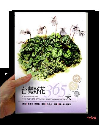台灣野花1.png