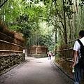 0829竹林