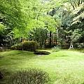 0829野宮神社的庭園