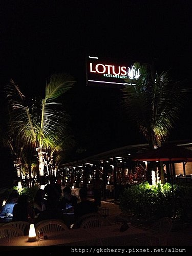 Lotus Restaurant 1.jpg