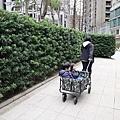 推車_201207_20.jpg