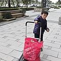 推車_201207_41.jpg