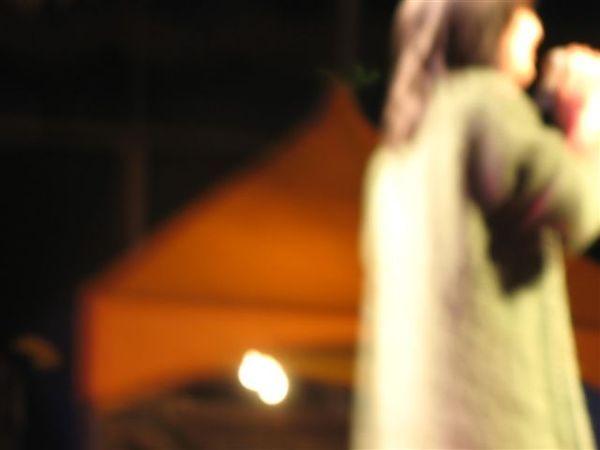 20080210彰化玫瑰+一中年貨街 018.jpg