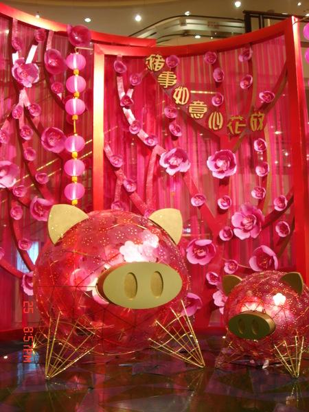 海港城豬年的豬
