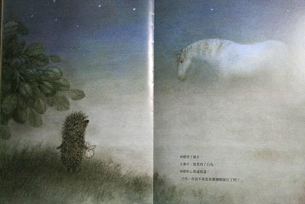 霧中的刺蝟04.JPG