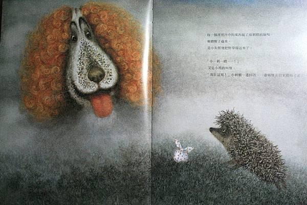 霧中的刺蝟07.JPG