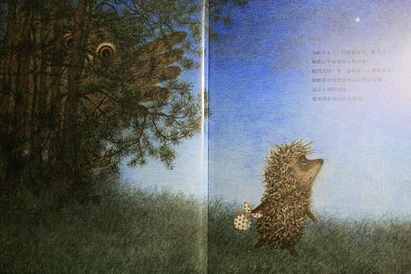 霧中的刺蝟03.JPG