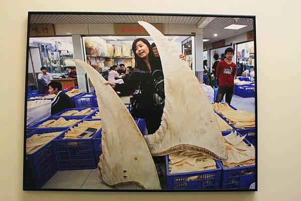 2012世界新聞攝影展20