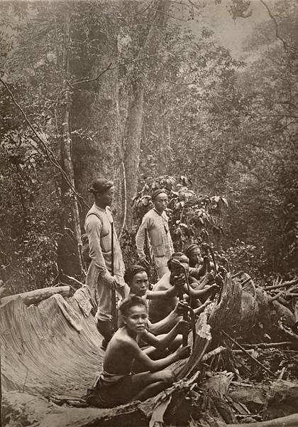 國家地理-8樟樹工人.jpg