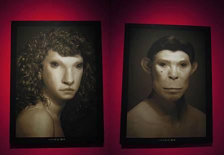 1979-1980羊猴.jpg