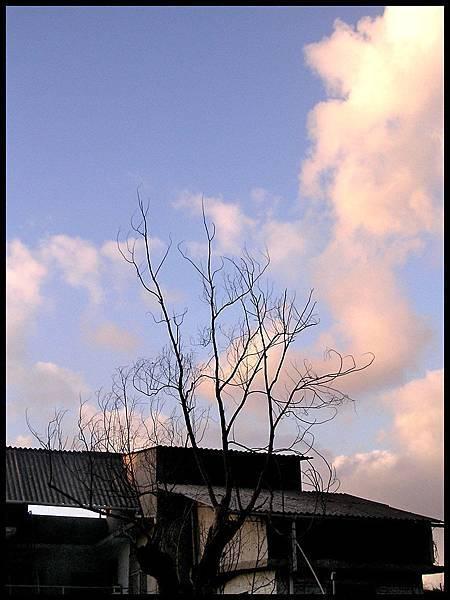 最愛的天空01.jpg