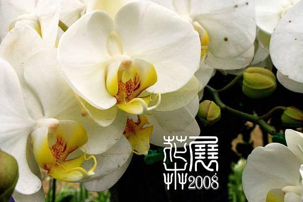 花卉展06.jpg