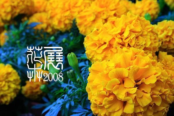 花卉展12.jpg