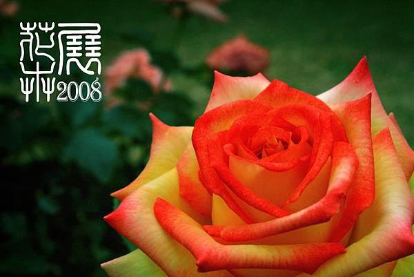 花卉展14.jpg