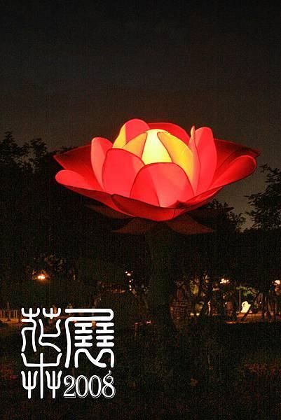 花卉展20.jpg