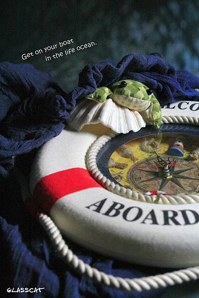 青蛙旅行01.JPG