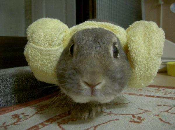 嘿..羊角帽喔