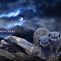NIGHTWATCHERS_2.jpg