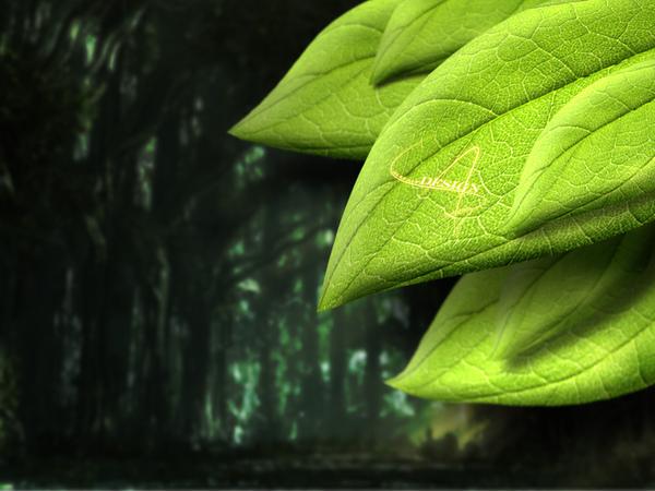 leaf拷貝.jpg