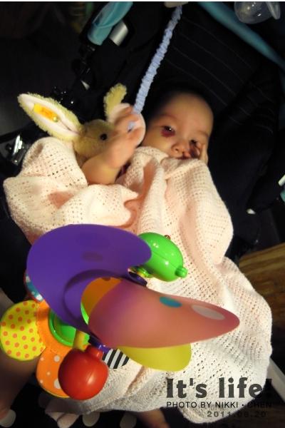 20110820-07-Ashley的新玩具.jpg