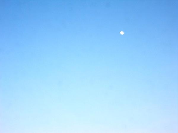 傍晚的月.jpg