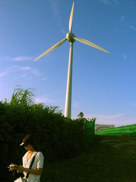 大風車和BBS