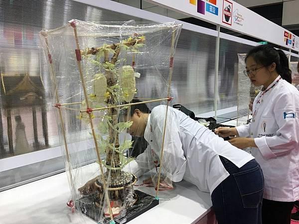 2017香港競賽甘苦記錄 #1_170522_0105.jpg