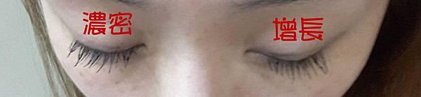 艾多美 睫毛膏5