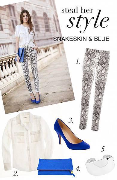 SNAKE_BLUE-e1353955774241