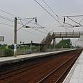 IMGP2409