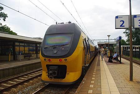 IMGP5219