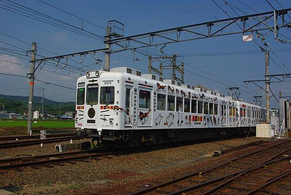 IMGP4335