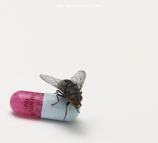 睽違長達5年 全球樂迷引頸期盼已久的2011全新創作大碟!
