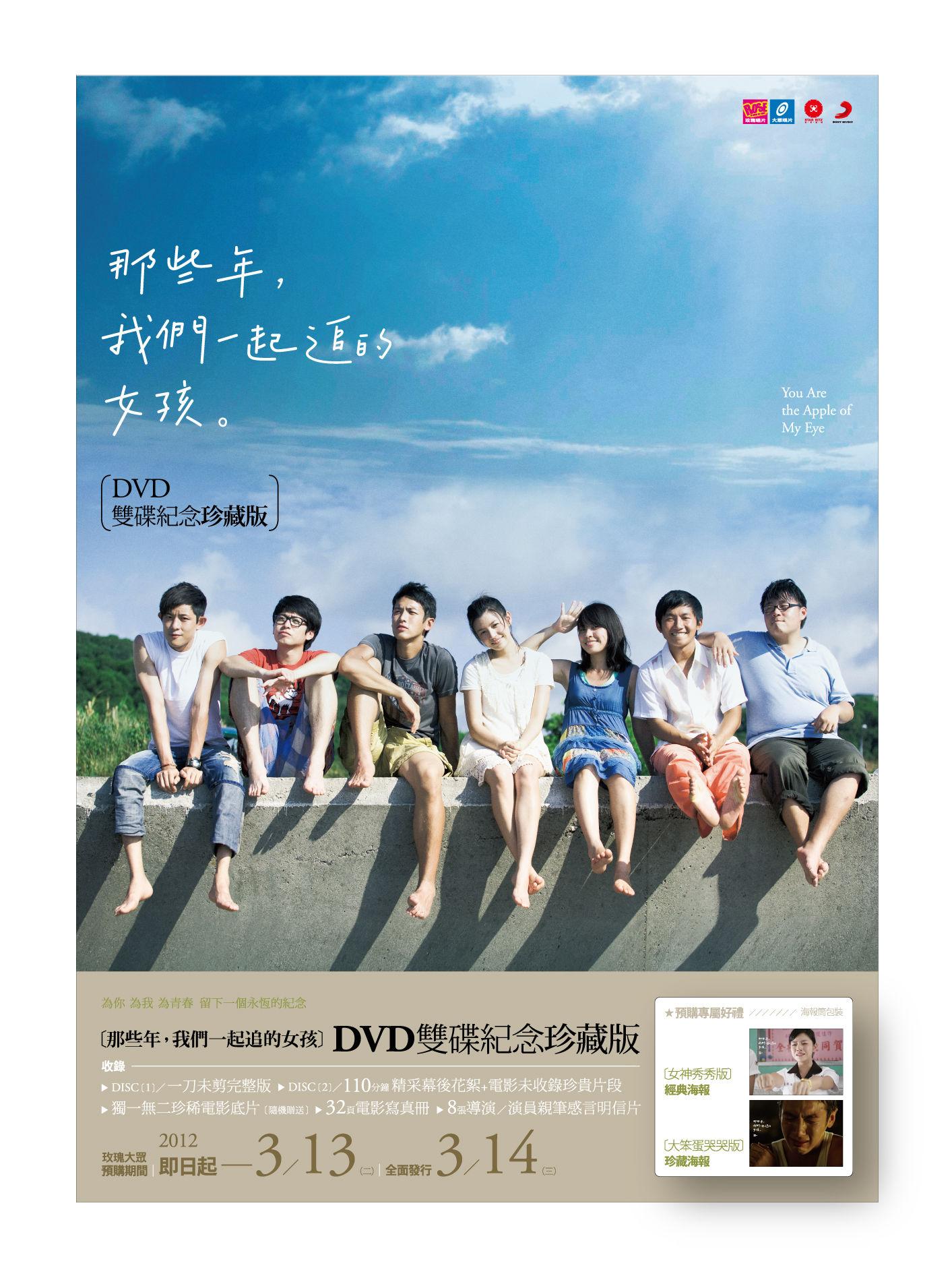 【那些年,我們一起追的女孩】雙碟紀念珍藏版--DVD