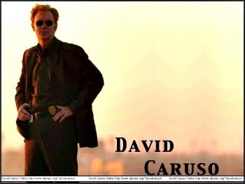 davidcaruso