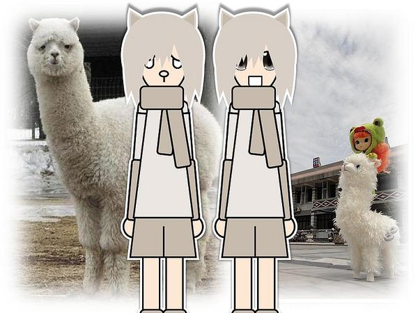 800px-Alpaca_shota.png