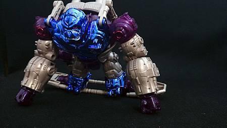 Optimus Primal_16-5