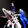 freedom_12.jpg