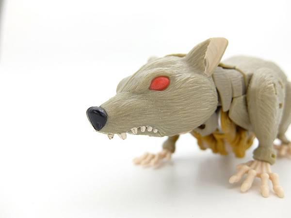 rattrap_6