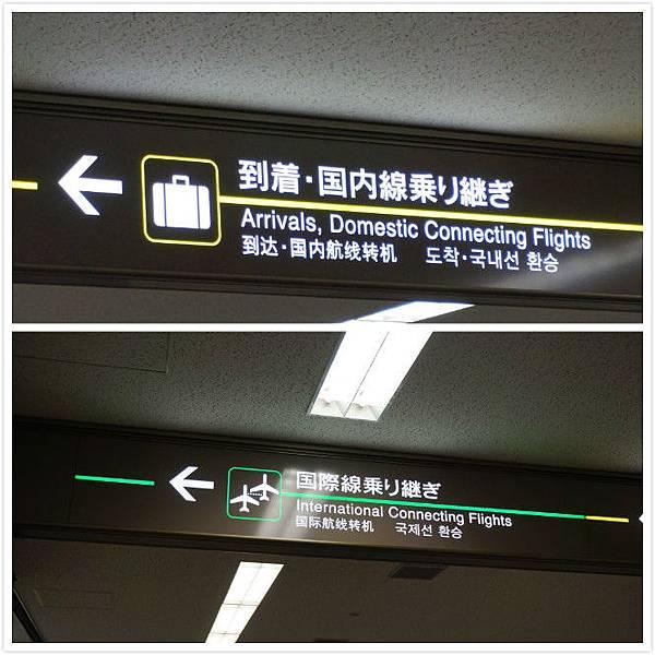 香草航空-18.JPG