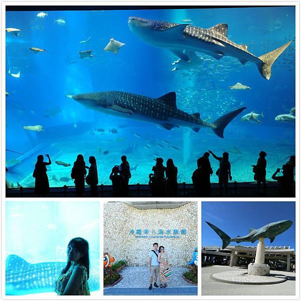 日本沖繩 海洋博物館-1.jpg