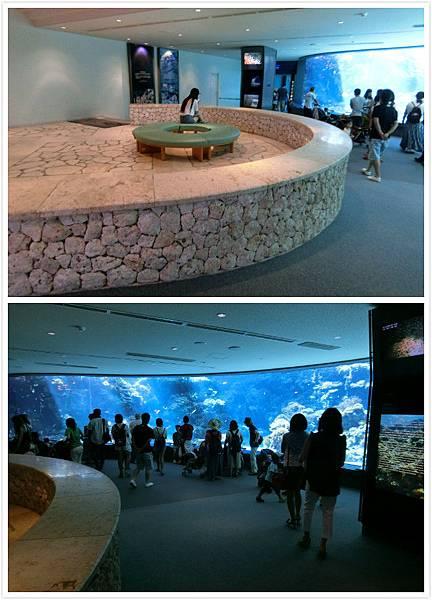 日本沖繩 海洋博物館-7.jpg