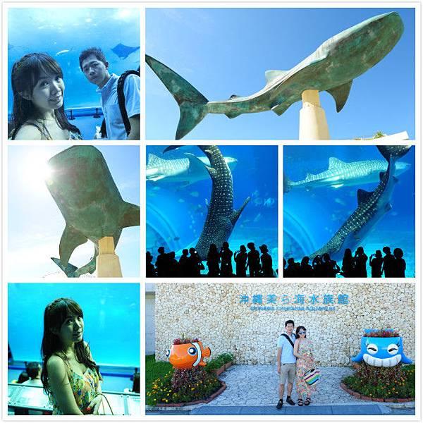 日本沖繩 海洋博物館-18.jpg