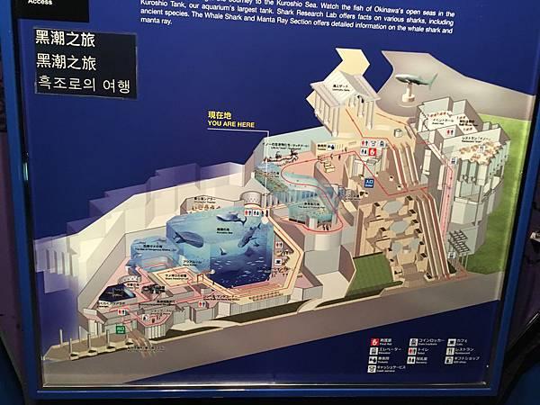 日本沖繩 海洋博物館詳細.JPG