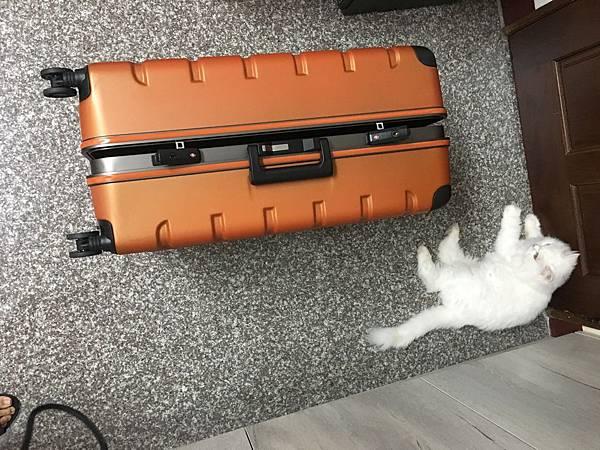 Crown 皇冠悍馬鋁框行李箱27吋-11.JPG