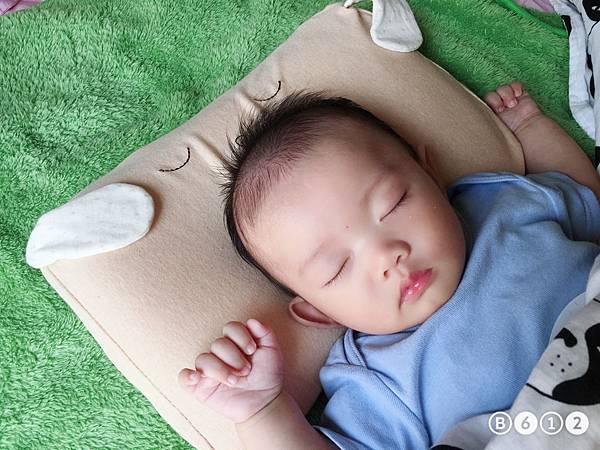 機棉枕頭Cani-1.1.JPG