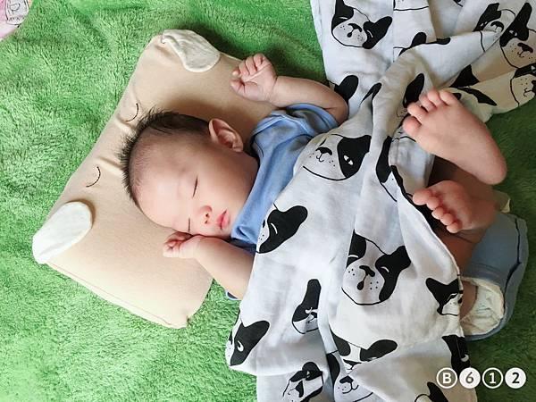 機棉枕頭Cani-9.JPG