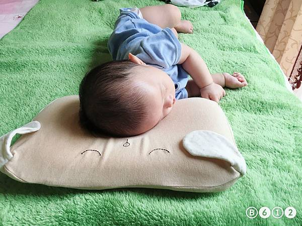 機棉枕頭Cani-12.1.JPG