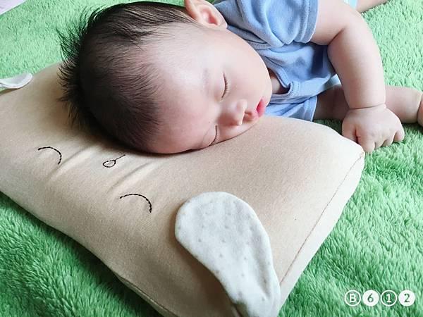 機棉枕頭Cani-12.3.JPG