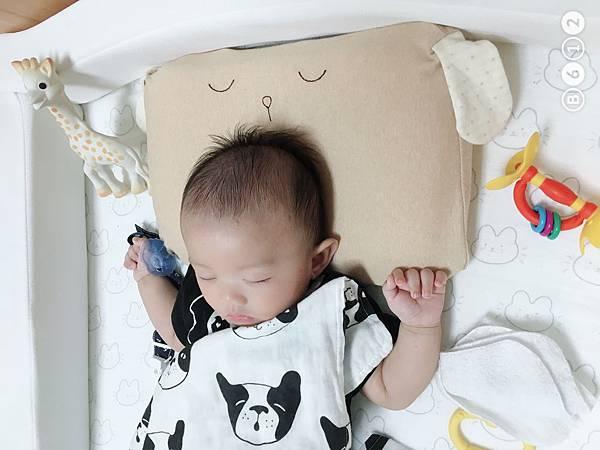 機棉枕頭Cani-14.JPG
